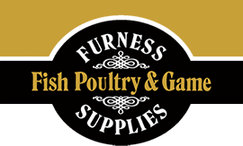 logo-furness